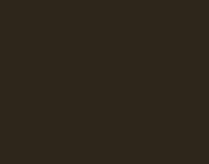 Saga Cykler